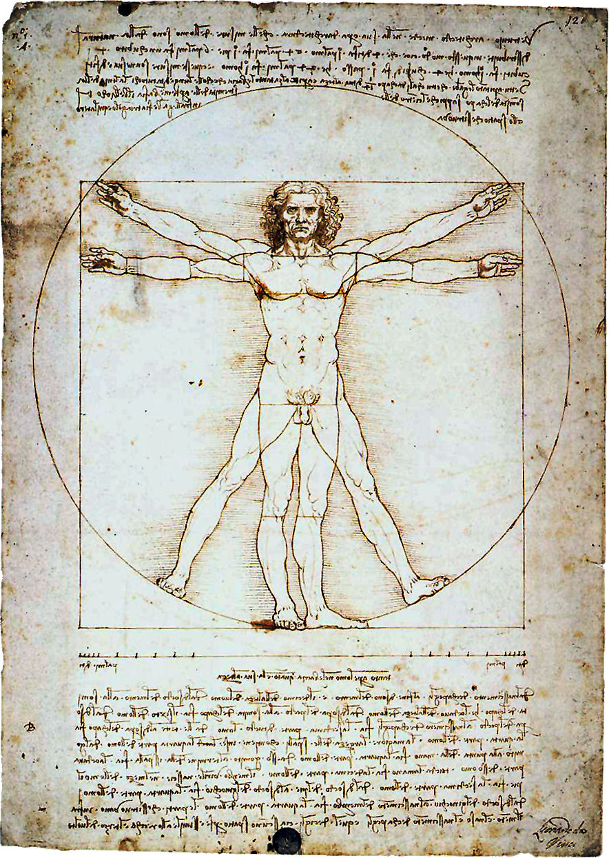 leonardo-da-vinci-the-vitruvian-man